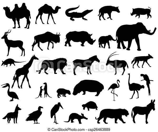 áfrica, animais - csp26463889