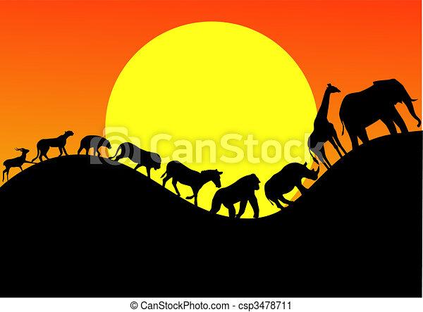 áfrica, silueta, animal - csp3478711