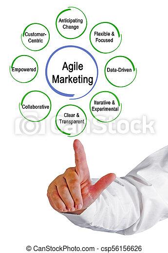 ágil, propriedades, marketing - csp56156626