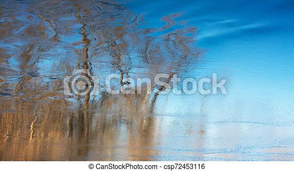 água, em movimento, árvores reflexão - csp72453116