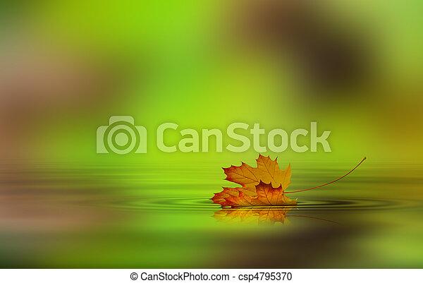 água, folha, caído - csp4795370