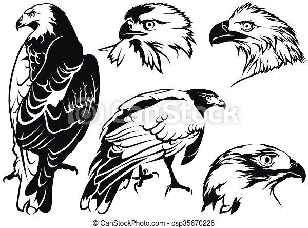 Tatuaje Aguila Águila, dibujos, tatuaje. Águila, tatuaje, -, vector, negro, dibujos