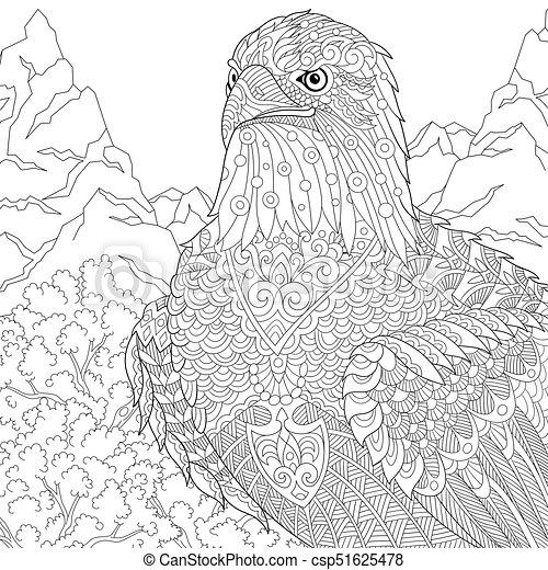 Águila, norteamericano, calvo, pájaro. Águila, bosquejo, colorido ...
