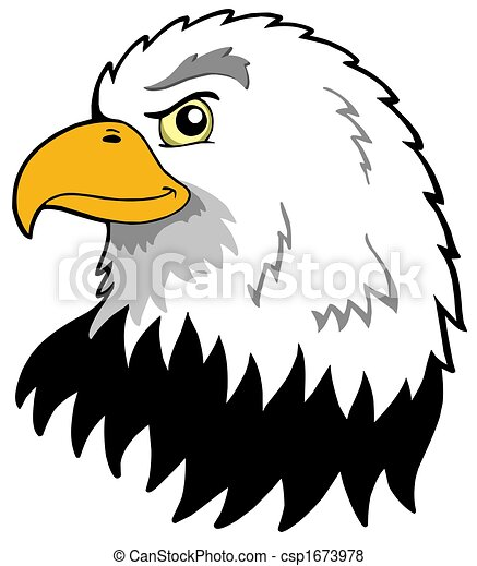 Águilas, norteamericano, cabeza. Cabeza, illustration ...