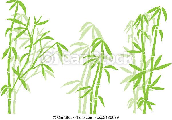 Árbol de bambú - csp3120079