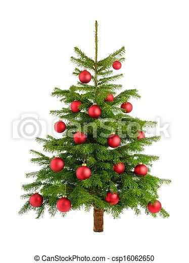 Lush árbol de Navidad con baubles rojos - csp16062650
