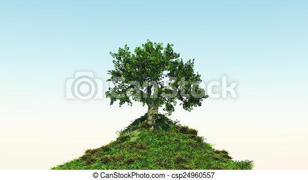 árbol, herboso, colina - csp24960557