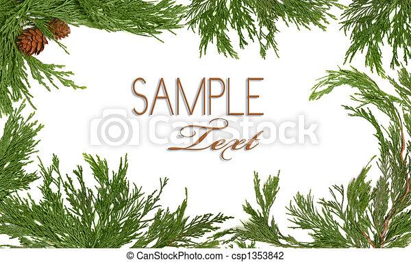 Rbol hoja perenne themed marco rbol branche navidad for Ver fotos de arboles de hoja perenne
