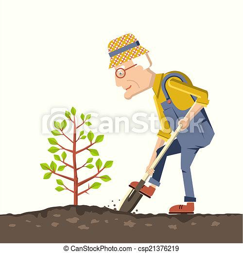 El viejo jardinero planta un árbol - csp21376219