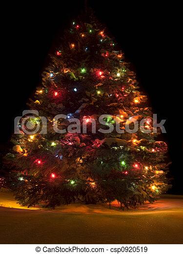 Árbol de Navidad - csp0920519