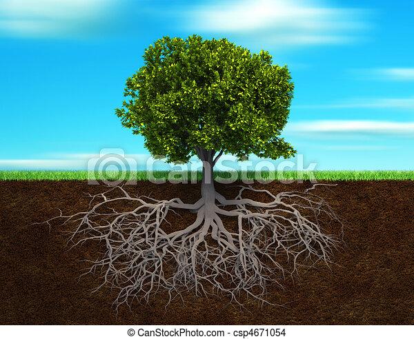 árbol, rood - csp4671054