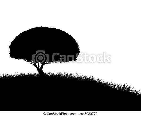 árbol, silueta, colina, herboso - csp5933779