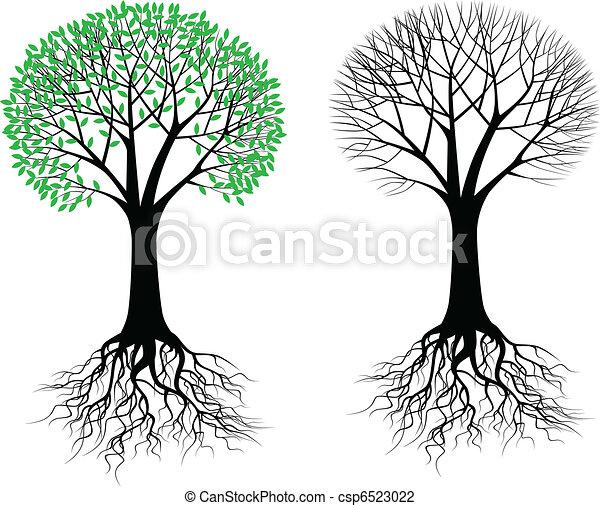 Silueta de árbol - csp6523022