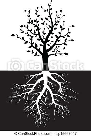 Silueta de árboles con raíces - csp15667047