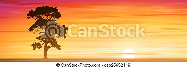 Árbol solitario - csp25652119