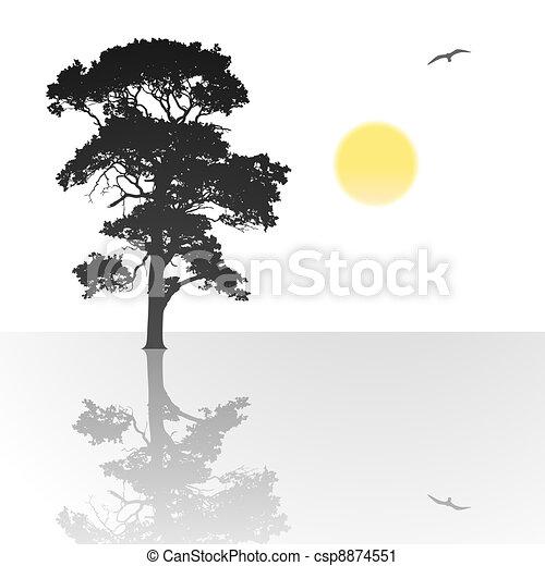 Árbol solitario - csp8874551