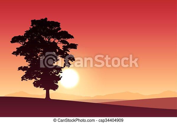 Árbol solitario - csp34404909