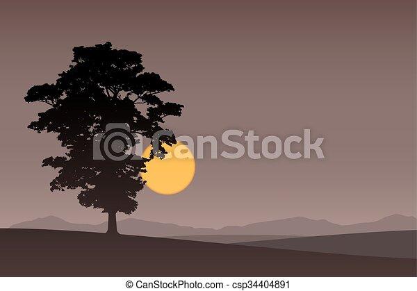 Árbol solitario - csp34404891