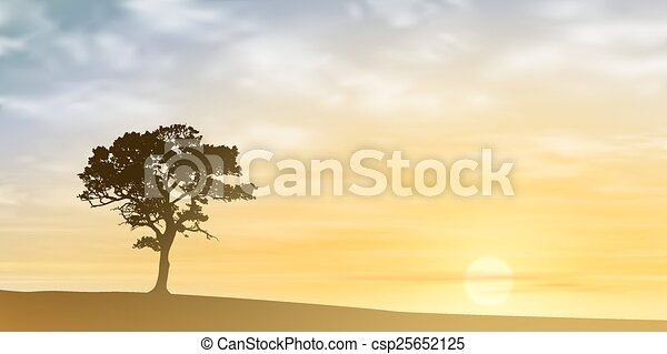 Árbol solitario - csp25652125