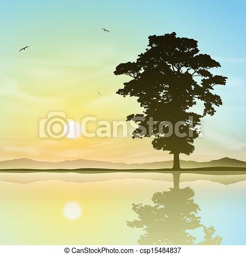 Árbol solitario - csp15484837