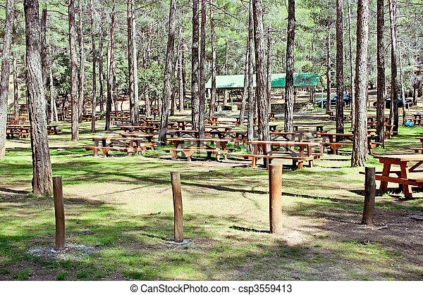 Área de picnic - csp3559413