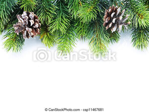 árvore abeto, borda, natal - csp11467681