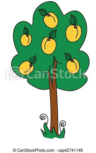 árvore abricó - csp42741148