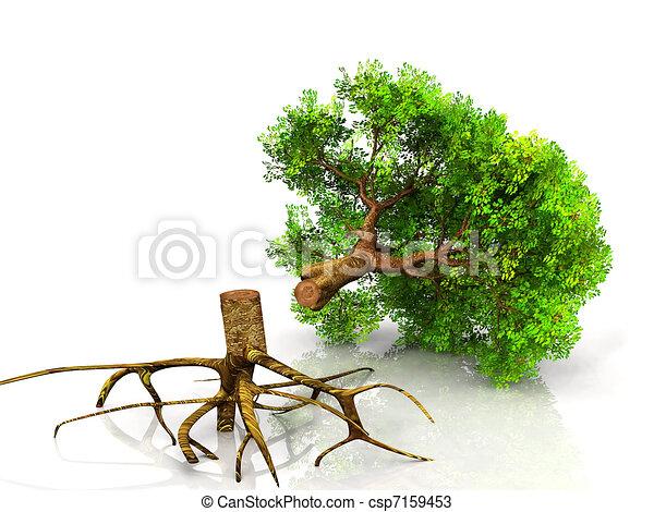 árvore caída - csp7159453