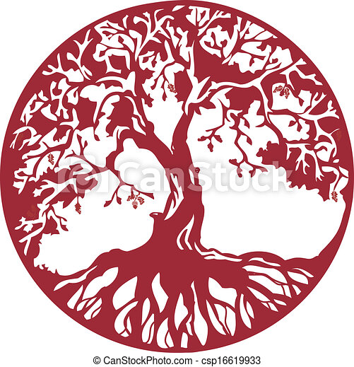 árvore carvalho - csp16619933
