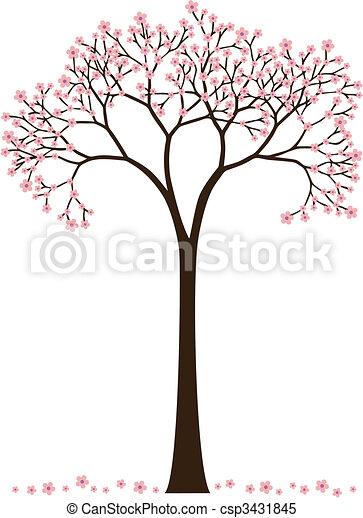 árvore cereja - csp3431845