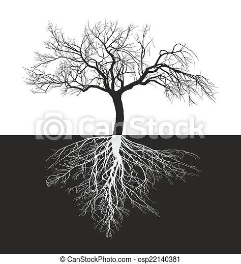 árvore, folhas, sem, raiz, maçã - csp22140381