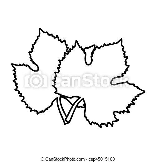 Árvore folhas vinho uva desenho 10 uva sai árvore eps