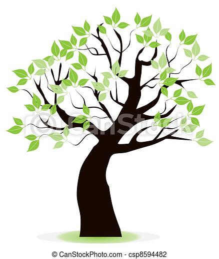 árvore - csp8594482
