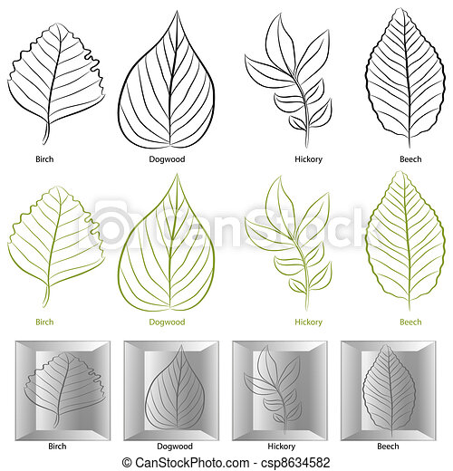 árvore, jogo, folha, tipo - csp8634582