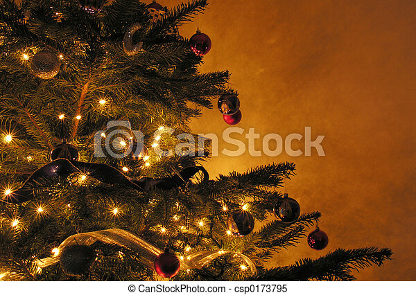 árvore, natal - csp0173795