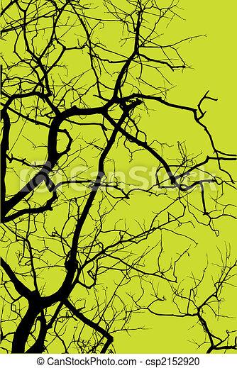árvore, silueta - csp2152920