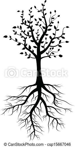 árvore, silueta, raizes - csp15667046