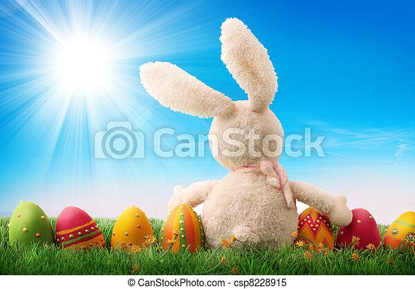 ägg, påsk, färgrik - csp8228915