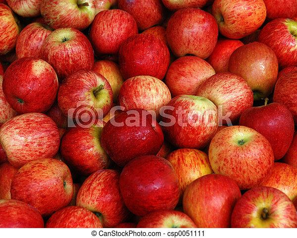 äpple - csp0051111
