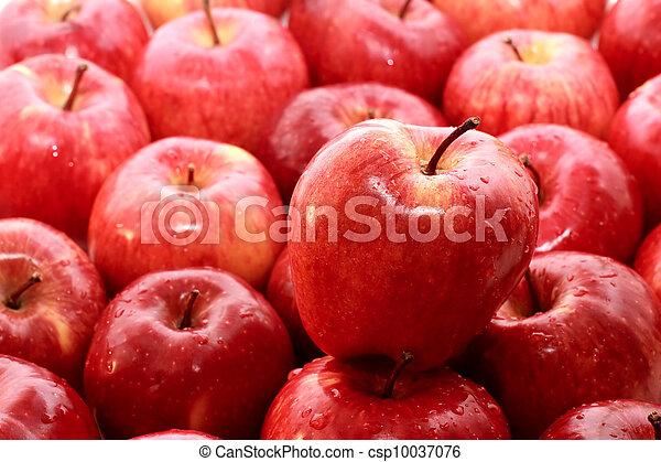 äpple - csp10037076