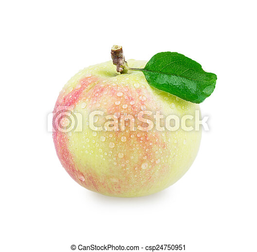 äpple - csp24750951