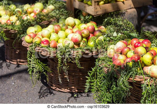 äpple - csp16103629