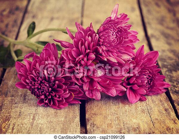årgång, stil, blomningen, gammal, retro - csp21099126