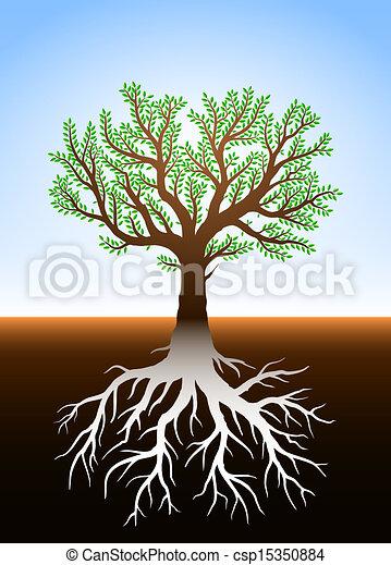 é, árvore, raizes, terra - csp15350884