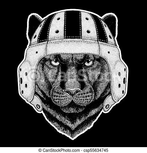 Écusson, puma, rugby, panthère, image, player., emblème, chat, t ...