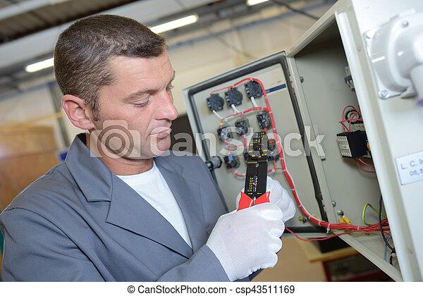 électricien, électrique, installation, panneau - csp43511169