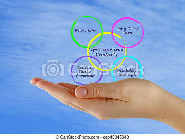 élet, termékek, biztosítás - csp43045040