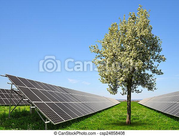 énergie, panneaux, solaire - csp24858408