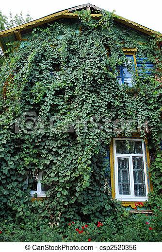 épület, zöld - csp2520356
