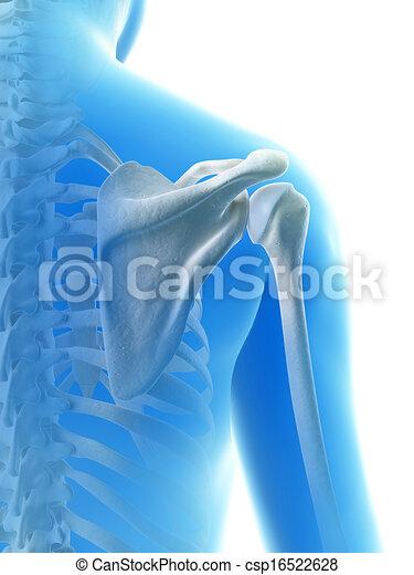 épaule, jointure - csp16522628
